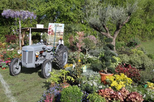 Les jolies flores 2017 2017 provins ile de france for Au jardin des gourmets